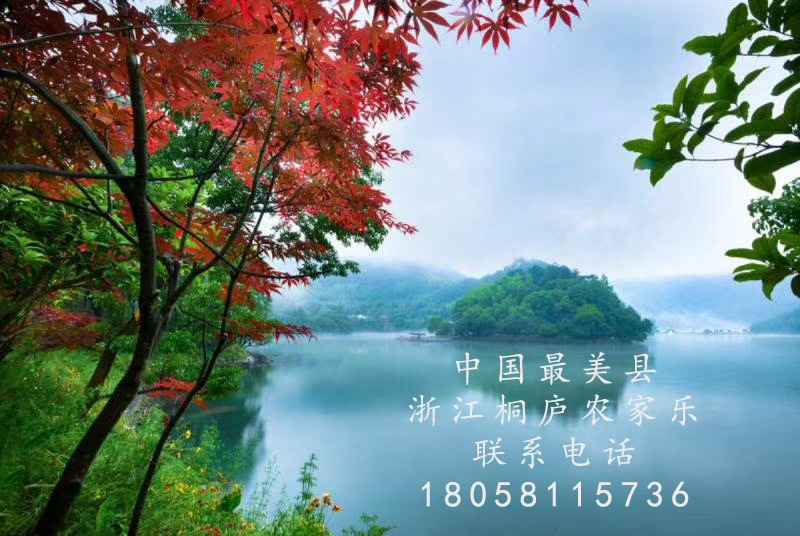 <a href=http://www.56njl.com target=_blank class=infotextkey>上海周边农家乐</a>